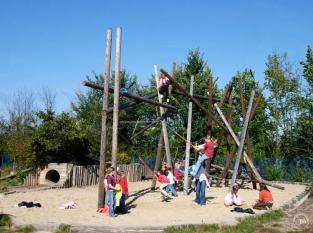 Timber_Climber_2